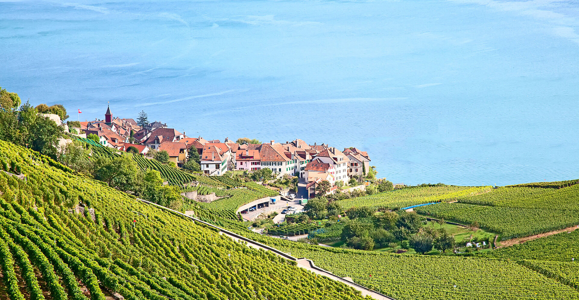 Lavaux wine yards & Lake Geneva